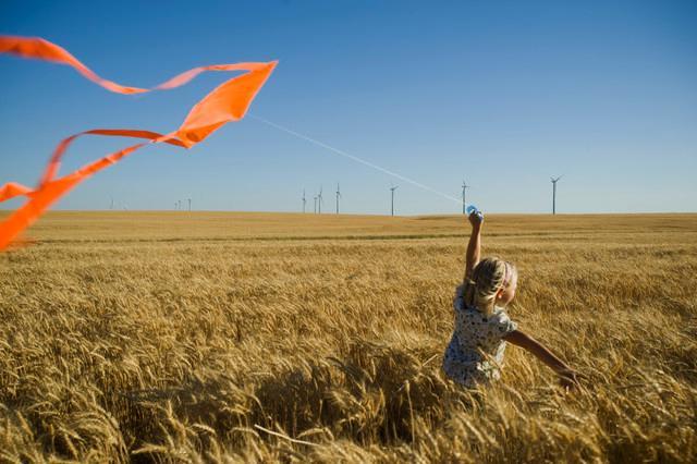 Prawna ochrona środowiska naturalnego w Polsce